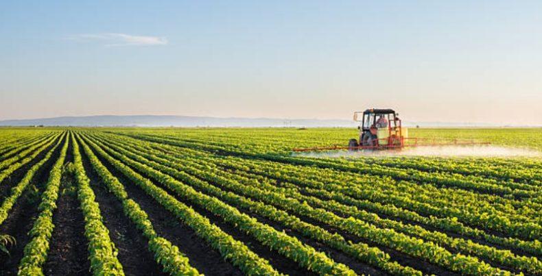 По какой ставке платят налог на прибыль сельхозпроизводители